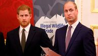 Royals-Expertin - William & Harry: Wie wird ihr Streit enden?