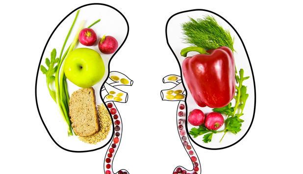 Diese 8 Lebensmittel entgiften Ihre Nieren • NEWS.AT