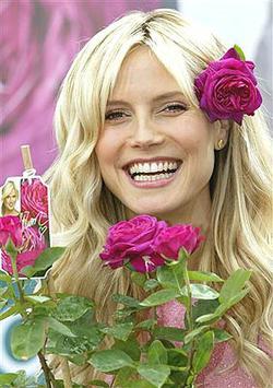 Schau mal Heidi: Elena Rotter raus aus Topmodel-Sendung - supersexy drin im FHM - leute_fernsehen_germanys_next_topmodel2007_26