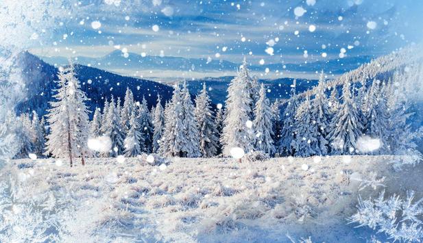 Weiße Weihnachten.Wunschtraum Weiße Weihnachten News At
