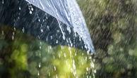 Regen prasselt auf einen Regenschirm