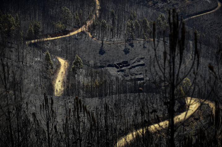 A road meanders amongst burnt forest areas affected by a wildfire in Vale do Cambra, some 30 km to Pedrograo Grande, on June 20, 2017. The huge forest fire that erupted on June 17, 2017 in central Portugal killed at least 64 people and injured 135 more, with many trapped in their cars by the flames.